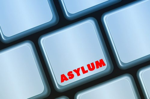 Article : J'ai testé pour vous… comprendre la demande d'asile en France. Explication sans prétention en 6 parties.